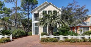 75 Cassine Way, Santa Rosa Beach, FL 32459 (MLS #771726) :: Scenic Sotheby's International Realty