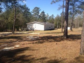 5220 Stallion Drive, Crestview, FL 32539 (MLS #771868) :: Somers & Company