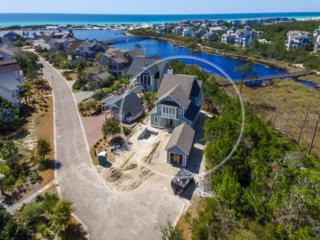 251 Gulf Bridge Lane, Watersound, FL 32461 (MLS #771958) :: Scenic Sotheby's International Realty