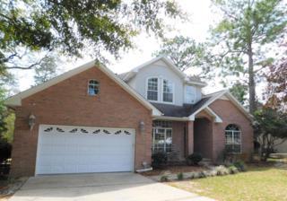 510 Blackwater Run, Niceville, FL 32578 (MLS #772033) :: Scenic Sotheby's International Realty