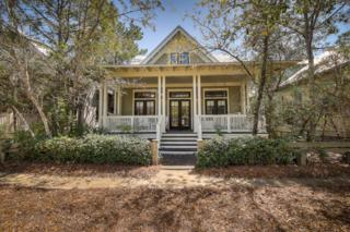 70 Spartina Circle, Santa Rosa Beach, FL 32459 (MLS #772902) :: Scenic Sotheby's International Realty