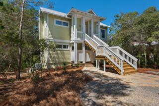 353 Wilderness Way, Santa Rosa Beach, FL 32459 (MLS #773296) :: Somers & Company