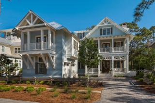88 Vermilion Way, Santa Rosa Beach, FL 32459 (MLS #773485) :: Scenic Sotheby's International Realty