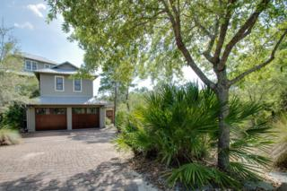 60 S Summit Drive, Santa Rosa Beach, FL 32459 (MLS #773750) :: Scenic Sotheby's International Realty