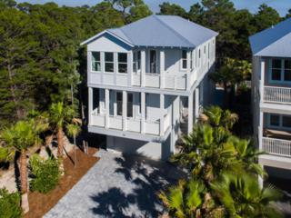 58 N Spooky Lane, Santa Rosa Beach, FL 32459 (MLS #774029) :: Scenic Sotheby's International Realty