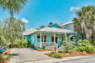 108 Beach Bike Way, Seacrest, FL 32461 (MLS #774183) :: Scenic Sotheby's International Realty