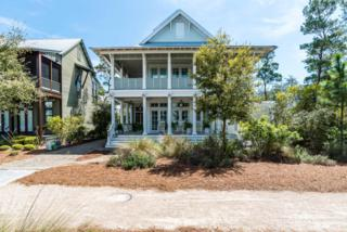 409 Needlerush Drive, Santa Rosa Beach, FL 32459 (MLS #774204) :: Scenic Sotheby's International Realty