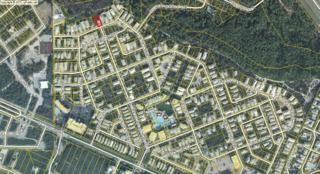 Lot 12 Endless Summer Way, Inlet Beach, FL 32461 (MLS #774934) :: Somers & Company