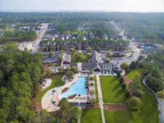 Lot 13 Seastone Court, Inlet Beach, FL 32461 (MLS #775198) :: The Premier Property Group