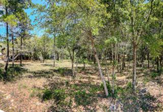 Lot 19/20 Ricker Avenue, Point Washington, FL 32459 (MLS #775388) :: The Premier Property Group
