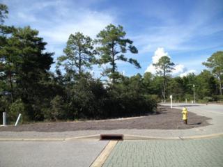 58 Ibis Drive, Santa Rosa Beach, FL 32459 (MLS #775567) :: Somers & Company