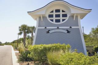 337 Bridge Lane B102, Watersound, FL 32461 (MLS #775772) :: The Premier Property Group