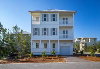 74 Sawgrass Lane, Santa Rosa Beach, FL 32459 (MLS #776026) :: The Premier Property Group