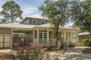 363 Canal Street, Santa Rosa Beach, FL 32459 (MLS #776315) :: The Premier Property Group