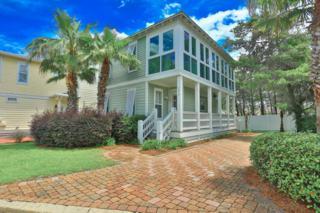 170 St Francis Drive, Miramar Beach, FL 32550 (MLS #776347) :: Somers & Company