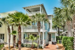 17 Sand Shovel Lane, Inlet Beach, FL 32461 (MLS #776418) :: Somers & Company