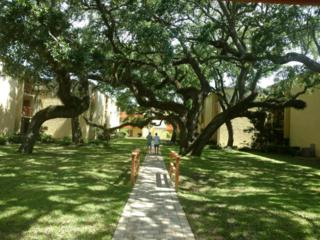 209 W Miracle Strip Parkway Unit C304, Mary Esther, FL 32569 (MLS #776487) :: Somers & Company
