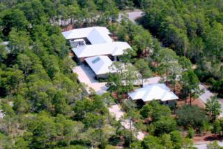20 W Blue Coral Drive, Santa Rosa Beach, FL 32459 (MLS #770685) :: Scenic Sotheby's International Realty