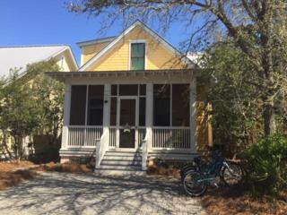 28 Lyonia Lane, Santa Rosa Beach, FL 32459 (MLS #771267) :: Somers & Company