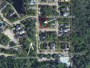 9 Blue Moon Lane, Santa Rosa Beach, FL 32459 (MLS #772751) :: The Premier Property Group