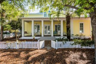 181 Smolian Circle, Santa Rosa Beach, FL 32459 (MLS #772914) :: Scenic Sotheby's International Realty