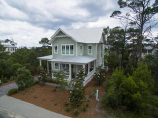 313 Morgans Trail, Santa Rosa Beach, FL 32459 (MLS #775313) :: Somers & Company