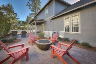 29 Sheepshank Lane, Santa Rosa Beach, FL 32459 (MLS #770430) :: The Premier Property Group