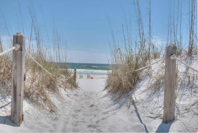 59 Sheepshank Lane Lot 161, Santa Rosa Beach, FL 32459 (MLS #714515) :: 30a Beach Homes For Sale