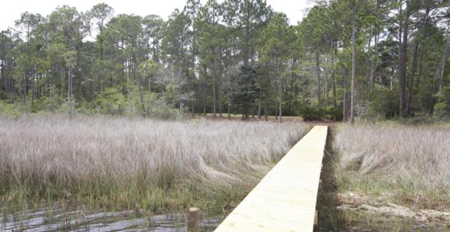 14 Woodland Bayou Drive, Santa Rosa Beach, FL 32459 (MLS #726339) :: Scenic Sotheby's International Realty