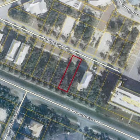 lot 15 Trigger Trail, Seacrest, FL 32461 (MLS #731068) :: Luxury Properties Real Estate