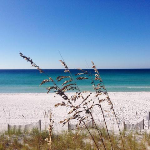 8575 Gulf Boulevard Unit 1304, Navarre, FL 32566 (MLS #741341) :: ResortQuest Real Estate