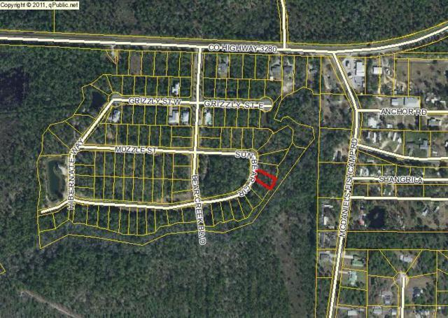 Lot 10 Sunbear Circle, Freeport, FL 32439 (MLS #761147) :: Hammock Bay