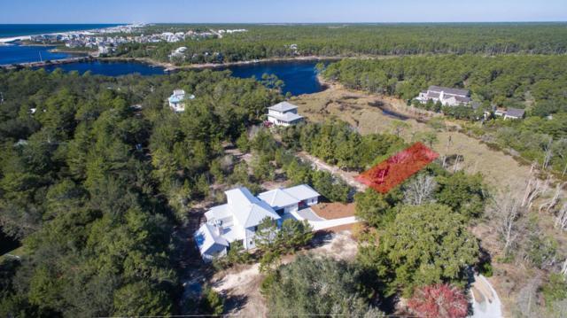 Lot 6 Cove Creek, Seacrest, FL 32461 (MLS #768028) :: Coast Properties