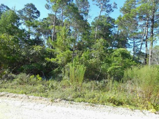 Lot 4 Blue Gulf, Santa Rosa Beach, FL 32459 (MLS #769209) :: Coast Properties