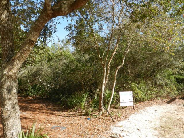 Lot 6 Wild Dunes Way, Inlet Beach, FL 32461 (MLS #770866) :: ResortQuest Real Estate