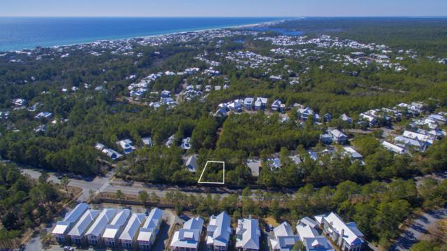 74 Royal Fern Way, Santa Rosa Beach, FL 32459 (MLS #771608) :: 30a Beach Homes For Sale