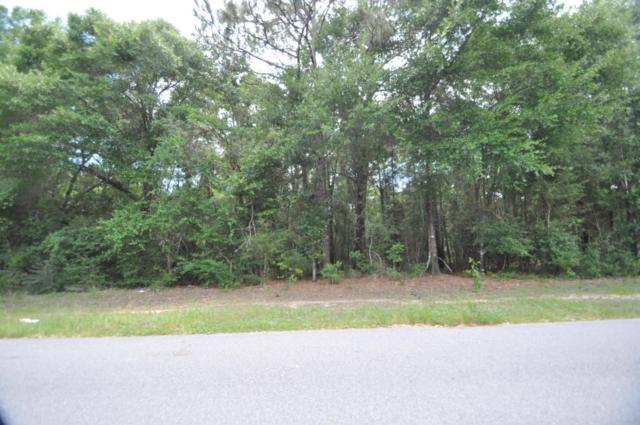000 Wilkerson Bluff Road, Holt, FL 32564 (MLS #776899) :: ResortQuest Real Estate