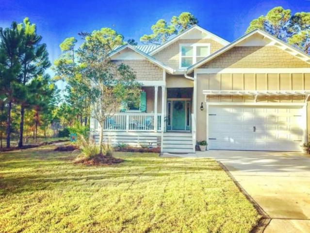 153 Spotted Dolphin, Santa Rosa Beach, FL 32459 (MLS #778222) :: RE/MAX By The Sea