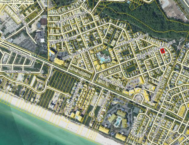11 Lifeguard Loop East, Seacrest, FL 32461 (MLS #778607) :: 30a Beach Homes For Sale