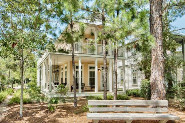 141 Winterberry Circle, Santa Rosa Beach, FL 32459 (MLS #778823) :: The Premier Property Group