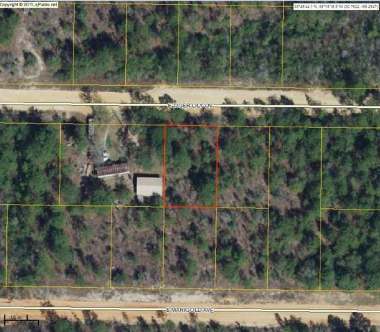 Lot 13 E Tiger Lily Lane, Defuniak Springs, FL 32433 (MLS #779478) :: Keller Williams Realty Emerald Coast