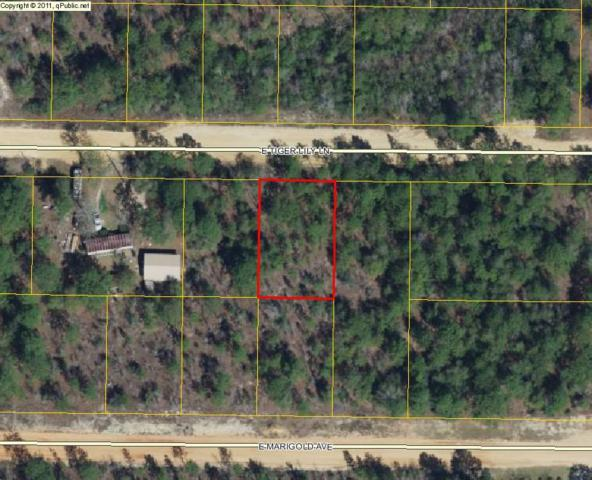 Lot 14 E Tiger Lily Lane, Defuniak Springs, FL 32433 (MLS #779479) :: Counts Real Estate Group