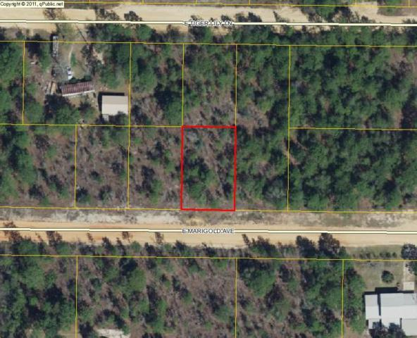 Lot 36 E Tiger Lily Lane, Defuniak Springs, FL 32433 (MLS #779482) :: Keller Williams Realty Emerald Coast