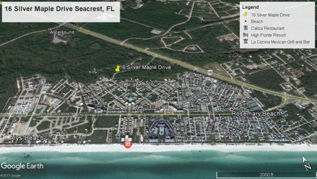 Lot 16 Silver Maple Drive, Seacrest, FL 32461 (MLS #781024) :: Scenic Sotheby's International Realty