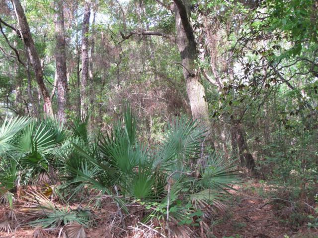 1604 Cassia Cove, Niceville, FL 32578 (MLS #781177) :: RE/MAX By The Sea