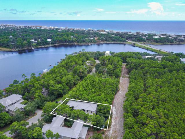 87 Chance Lane, Seacrest, FL 32461 (MLS #781634) :: Classic Luxury Real Estate, LLC