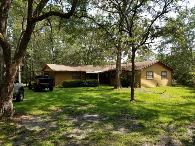 203 Sweetwater Lane, Freeport, FL 32439 (MLS #781785) :: Scenic Sotheby's International Realty