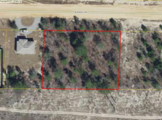 2 lots E Daisy Lane, Defuniak Springs, FL 32433 (MLS #782292) :: Luxury Properties Real Estate