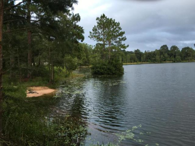 33 Pike Pond Rd, Chipley, FL 32428 (MLS #783443) :: Scenic Sotheby's International Realty
