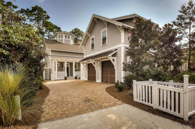 39 W Yacht Pond Lane, Inlet Beach, FL 32461 (MLS #783690) :: Somers & Company